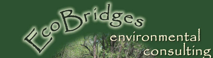 Eco Bridges Environmental Consulting, Anne Wallace, Principal and Founder